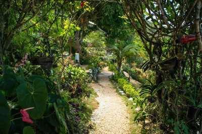 Ahhh Ras Natango Gallery and Garden in Montego Bay