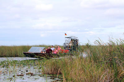 Airboat Tours in Miami