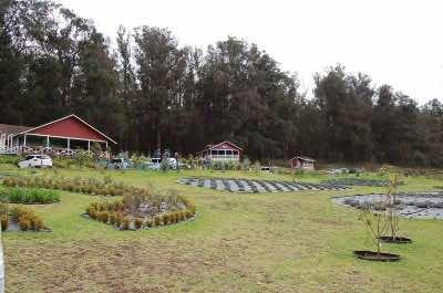 Ali'i Kula Lavender Farm in Maui