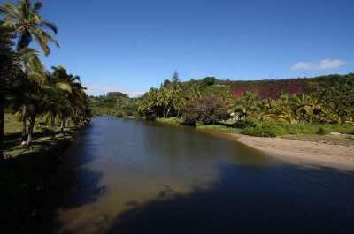Allerton Garden in Kauai