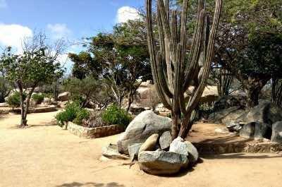 Arikok National Park in Aruba