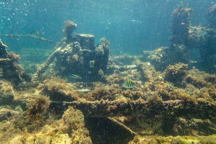 Shipwreck in Aruba