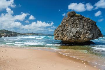 Barbados in a Day Tour