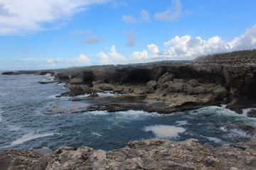 Coastal Sightseeing Tour