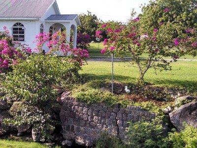 Bath Hotel and Spring House On Nevis