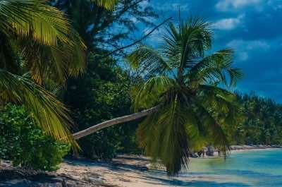 Bavaro Beach (Playa Bavaro) in Punta Cana