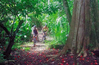 Walking and Biking Tours in St. Lucia