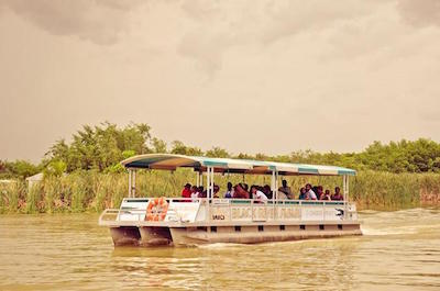 Black River Safari Tour from Montego Bay
