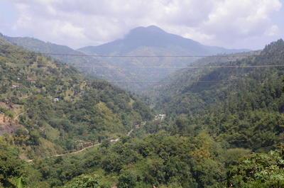 Mountains in Ocho Rios