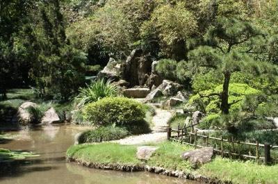 Botanical Garden in Rio de Janeiro