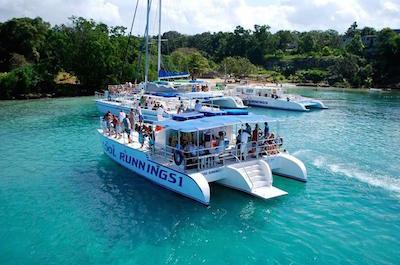 Cruises, Sailing & Water Tours in Runaway Bay