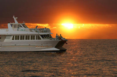 Dinner Cruises in Maui