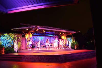 Disney's Spirit of Aloha Show