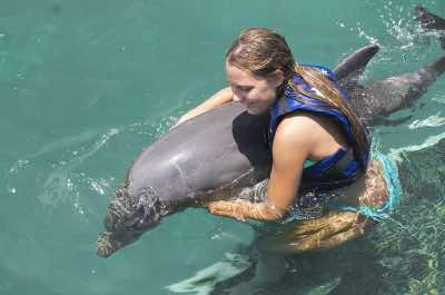 Dolphin Explorer in Punta Cana