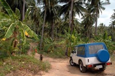 Dominica Shore Excursion: Half Day Jeep Safari