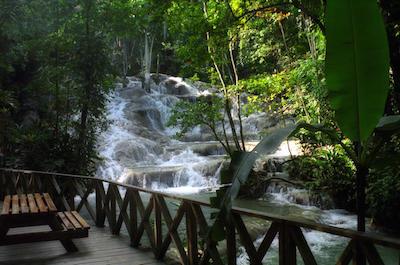 Dunn's River Falls Day Trip in Runaway Bay