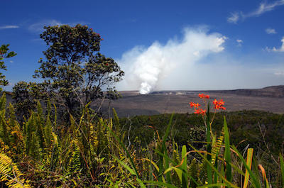 Eco Adventures In Oahu