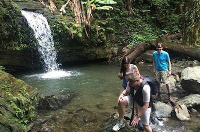 Things To Do In Fajardo - El Yunque National Forest Tour