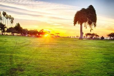 Ellen Browning Scripps Park in San Diego