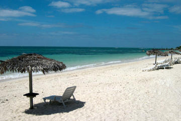Freeport Shore Excursion: Bahamas Style Bonfire on the Beach in Bahamas