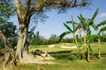 Freeport Shore Excursion: Lucayan National Park Tour in Bahamas