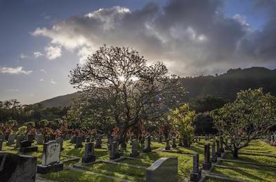 Ghost & Vampire Tours In Oahu