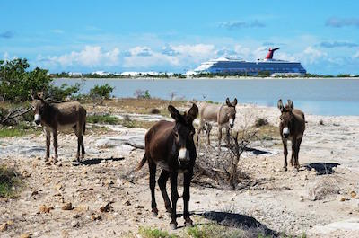 Things To Do In Grand Turk -  Historical Sightseeing Tour by Tram