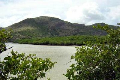 Great Salt Pond In St. Kitts