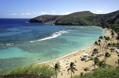 Hanauma Bay Snorkeling Adventure Half-Day Tour in Oahu