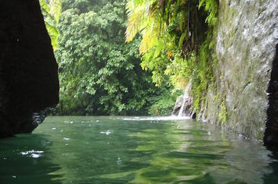 Hiking & Camping Dominica