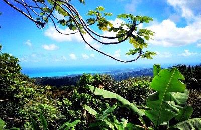 Hiking tours in San Juan