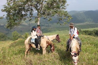 Horseback Riding Tours in San Ignacio