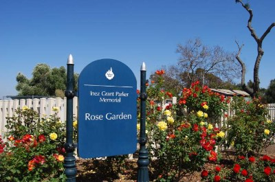 Inez Grant Parker Memorial Rose Garden in San Diego