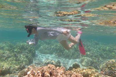 Island Safari Snorkeling by Motor Boat in Fajardo