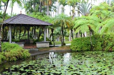 Jardin de Balata in Martinique