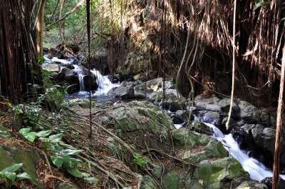 Kapena Falls in Oahu