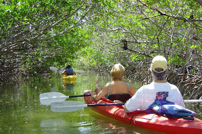 Kayaking Tours in Key West
