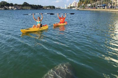 Kayaking Tours in Miami