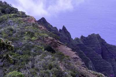 Koke'e Mountains in Kauai