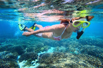 Leeward Coast Dolphin and Snorkel Half-Day Cruise in Oahu