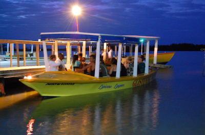 Luminous lagoon in Montego Bay