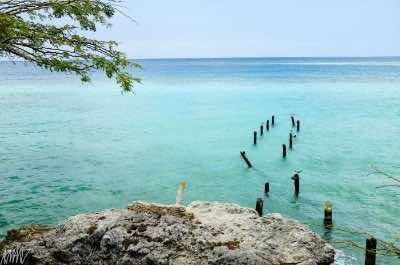 Mangel Halto, Aruba