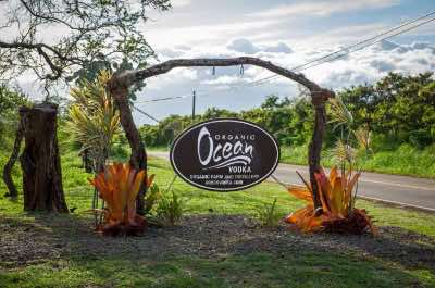 Ocean Vodka Organic Farm and Distillery in Maui