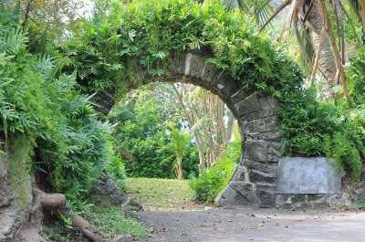 Palm Groves Garden (Gibbons Garden) in Bermuda