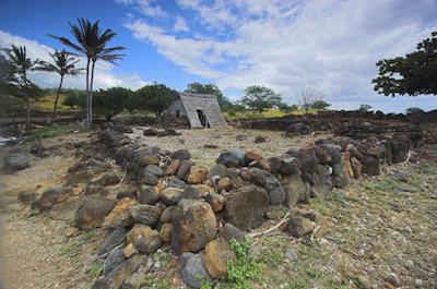 Sacred Hawaiian Spirits Morning Tour