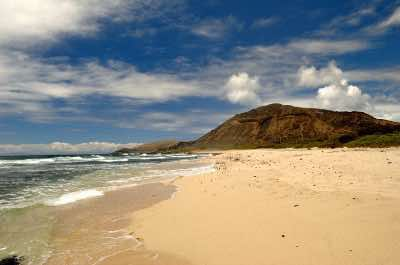 Sandy Beach Park in Oahu
