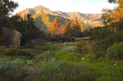 Santa Barbara Botanic Garden in Santa Barbara