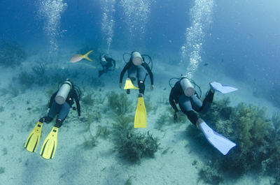 things to do in Freeport Bahamas - Scuba Diving