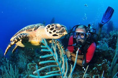 Scuba Diving in Grand Cayman