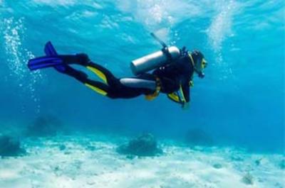 Scuba Diving in Puerto Plata